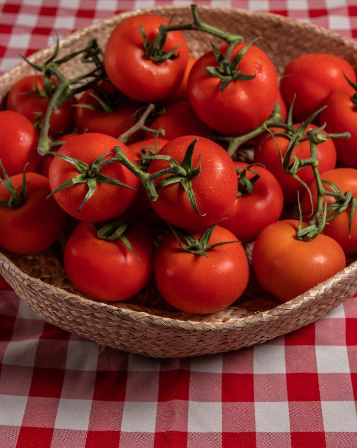 עגבניות מגי
