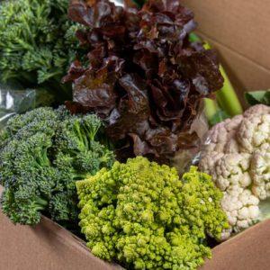 סל ירקות מהחווה-למשפחה גדולה
