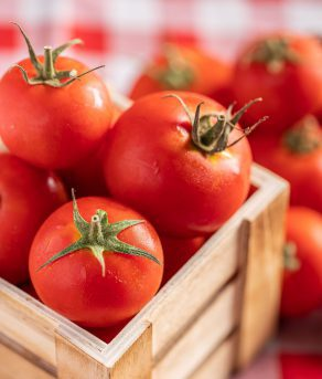 עגבניות מגי-ארוז