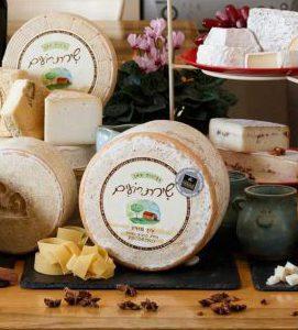 גבינת יובל מחלבת שירת רועים